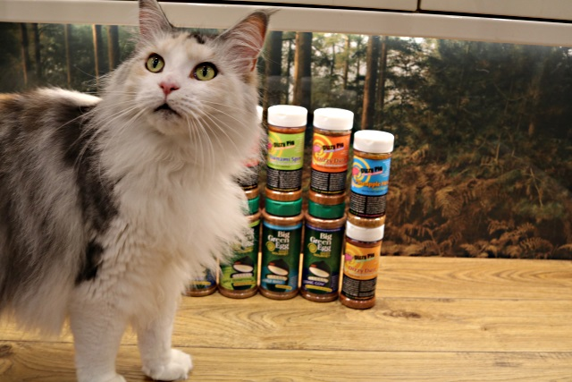 Even the cat was interested in the BBQ rubs